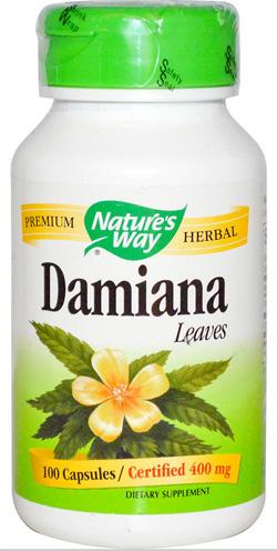 ใบแดมเมียนา, Damiana Leaf