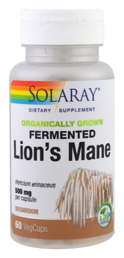 เห็ดยามาบูชิตาเกะ, Fermented Lion's Mane