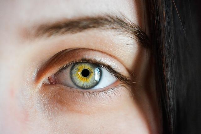 จอประสาทตาเสื่อม